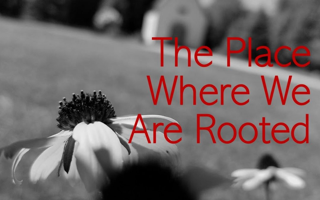 The Place Where We Are Rooted