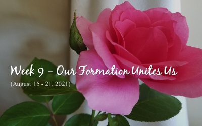 Week 9 – Our Formation Unites Us