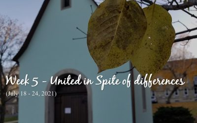 Week 5 – United in Spite of differences